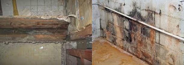 plumbing-image2